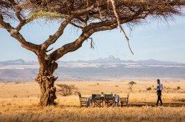 safari-kenya-africa