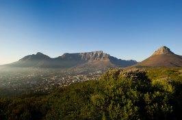 safari-south-africa-cape-town