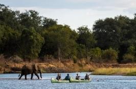 elephant and canoes private Zimbabwe safari