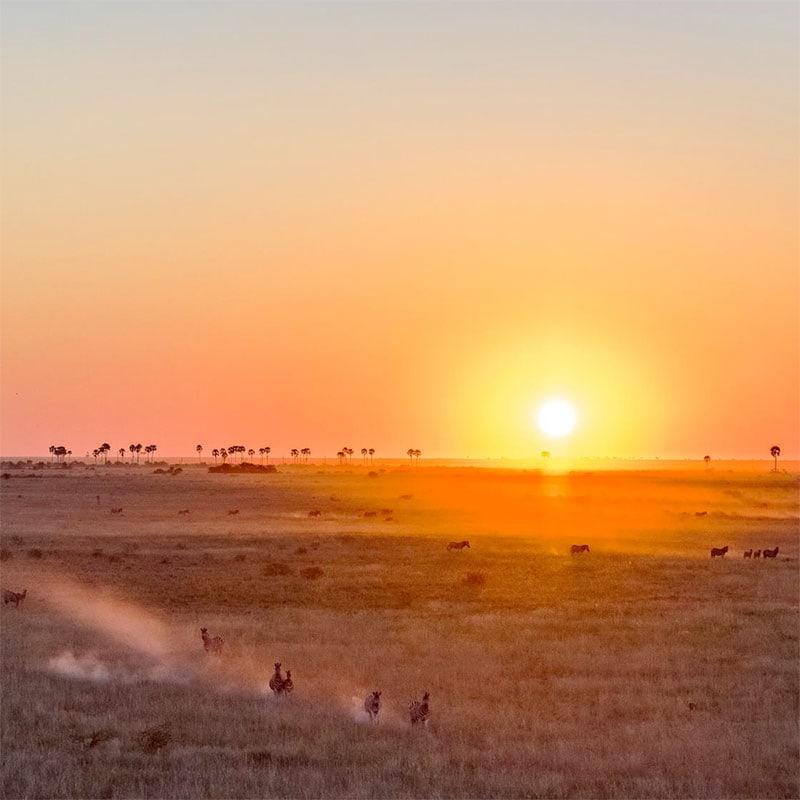 Botswana Mobile