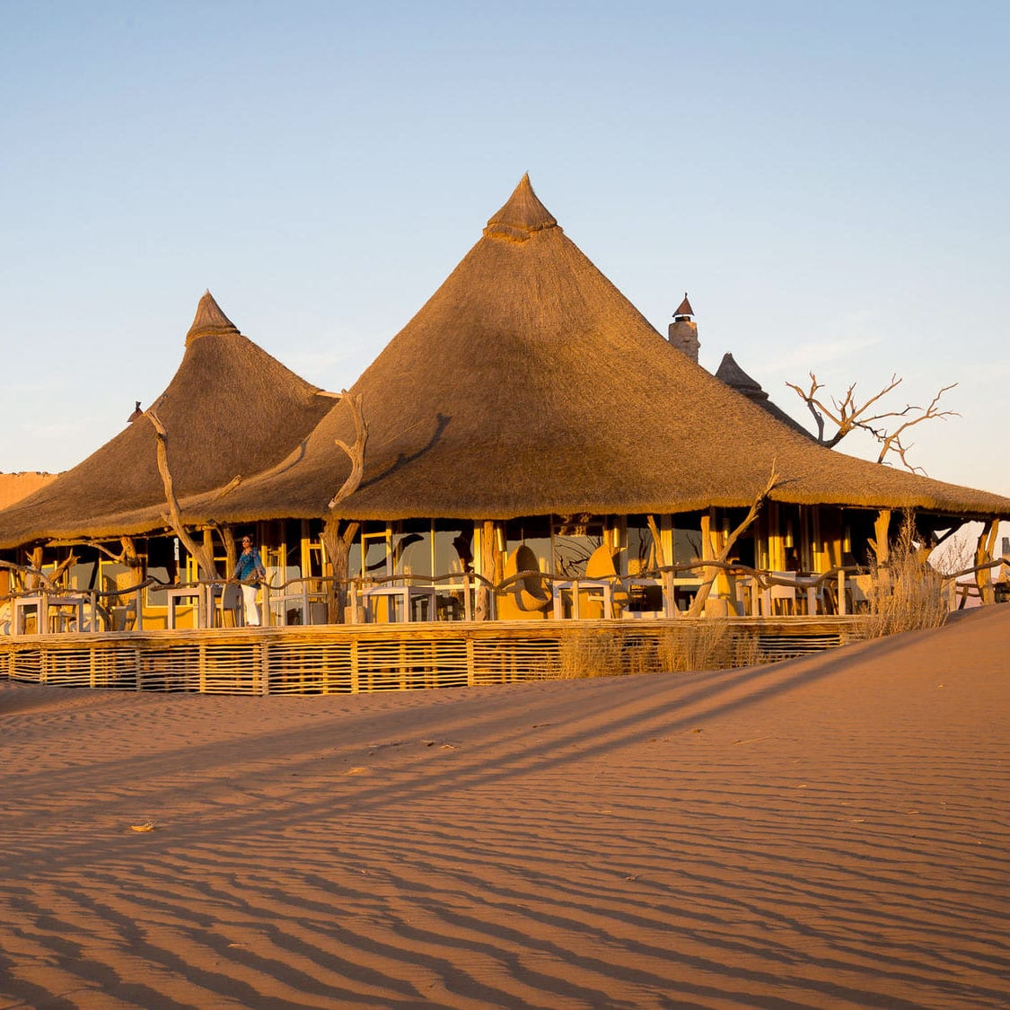 The Best of Namibia
