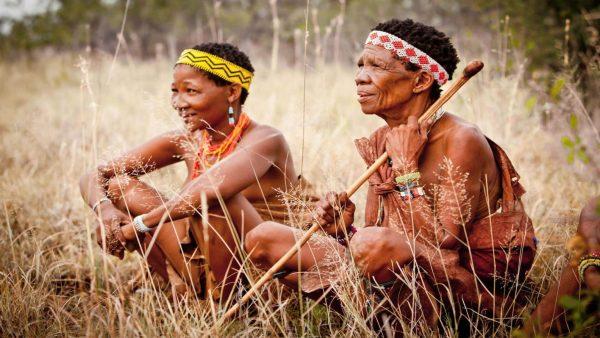Bushman-Sitting-1536×864