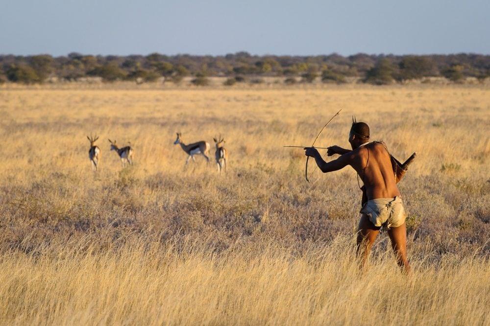Kalahari_2012-06-196e