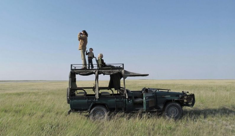 game_drives_-_in_the_grass
