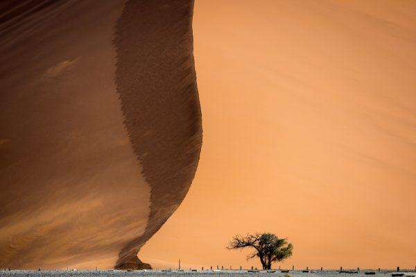 kulala-namib_2014-12-225e