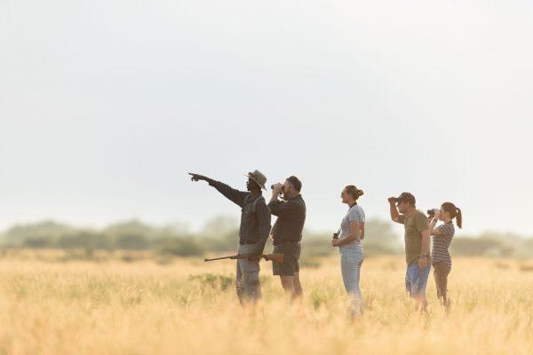 Botswana Classic Safari Bush
