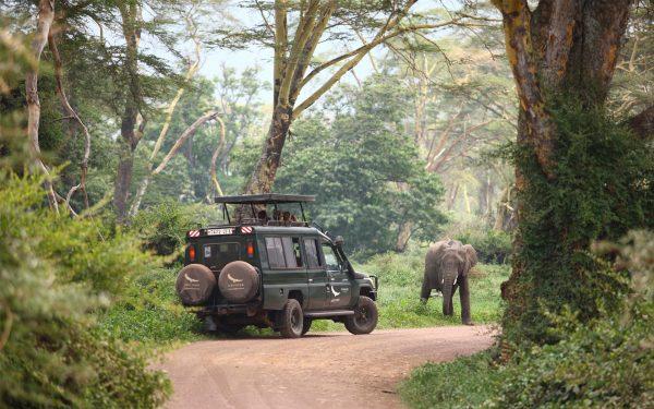ngorongoro-crater-lodge-game-drive