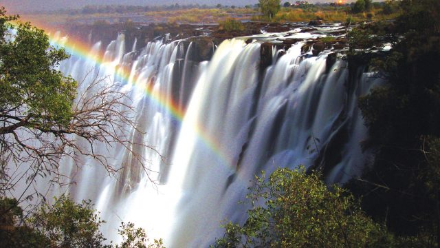 The Best of Zimbabwe Safari