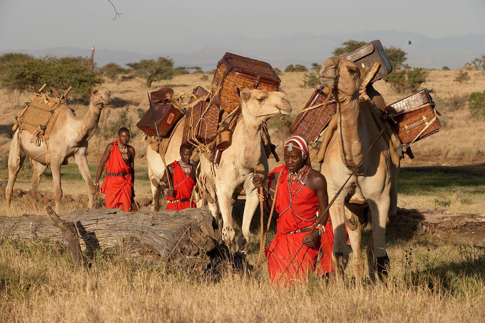 Kenya Intrepid Safari with camels