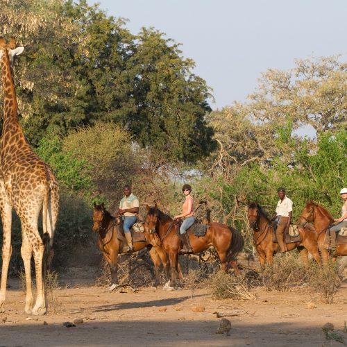 mashatu_horse_safari_10